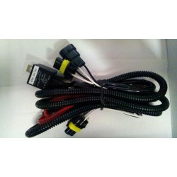 Two Bulb 10 second delay HID relay harness