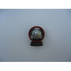 H11 Halogen Superwhite Bulbs (blue tint)